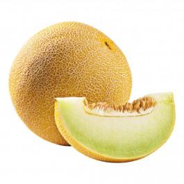 Meloen Galia per stuk