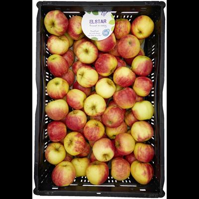 Elstar appels 1,5 kilo