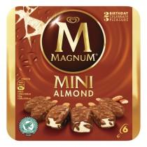IJs Magnum mini almond 6 stuks